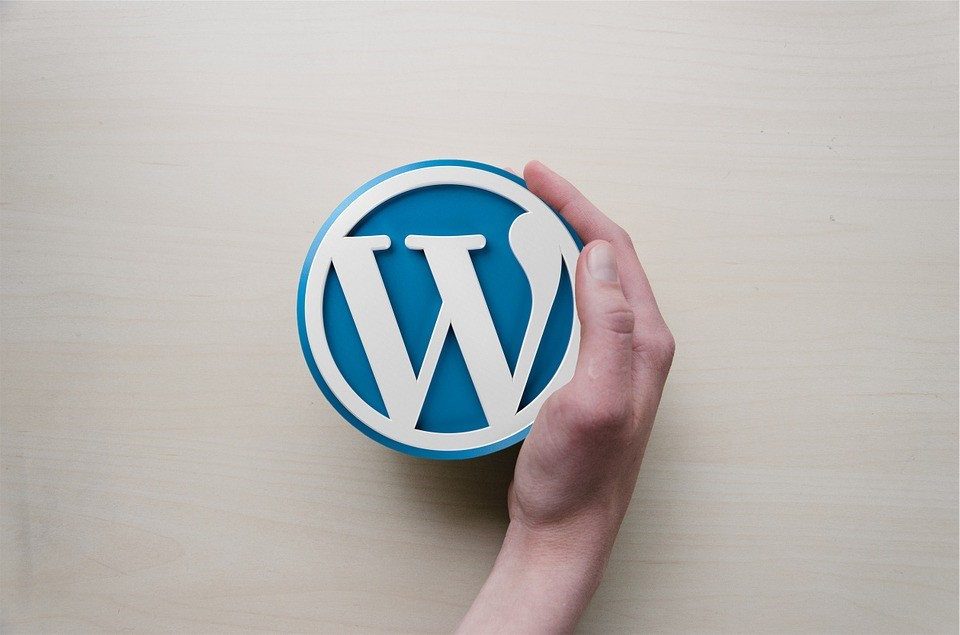 benefits of wordpress | RCM School Of Excellence Digital College